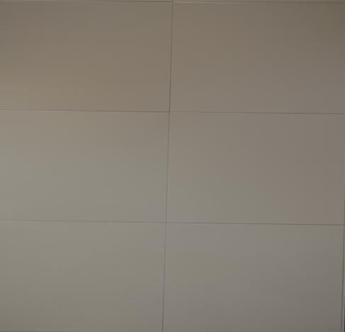 吊顶亚光白PG305-GM15 PG305-GM15
